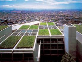 Urban_Green_Roof